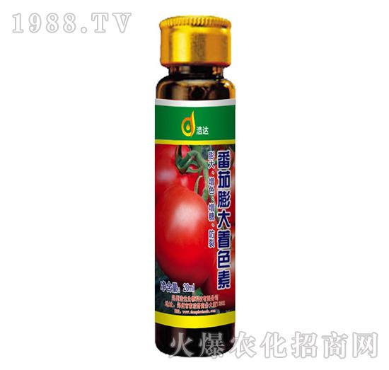 番茄膨大着色剂-浩达
