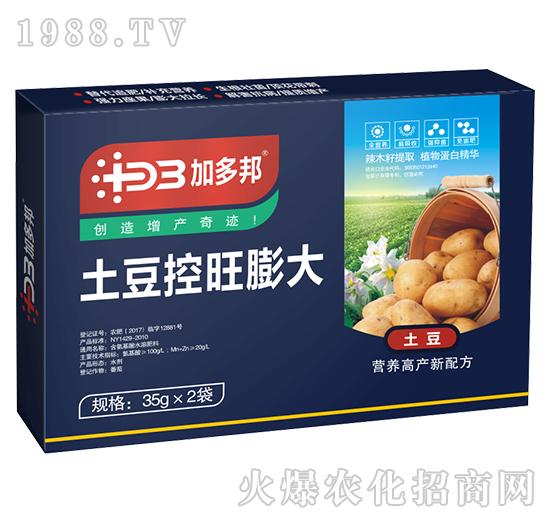 土豆控旺膨大-加多邦