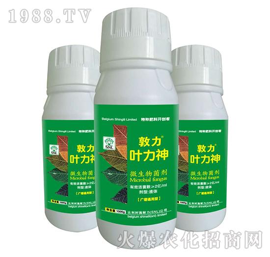 微生物菌剂-敦力叶力神-施耐力