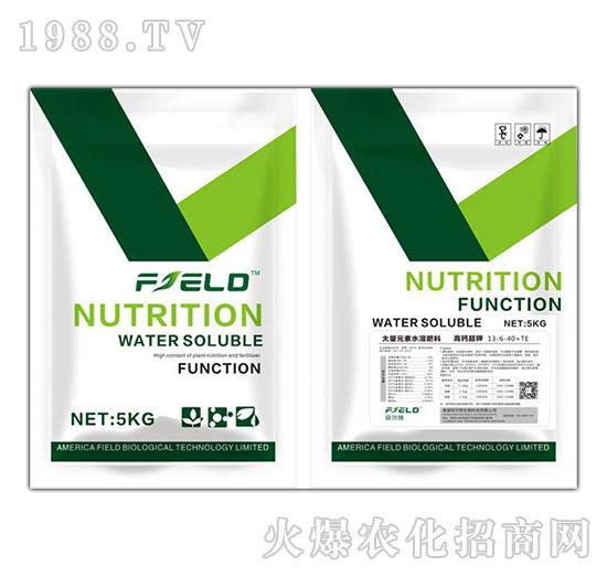 高钙超钾大量元素水溶肥13-6-40+TE-菲尔特