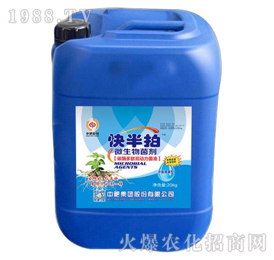 肽酶多肽植物乳杆菌液(桶)-快半拍-中肥股份