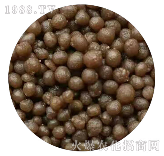 多元素二铵-育农