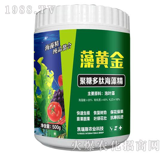 聚糖多肽海藻精-藻黄金-凯瑞斯