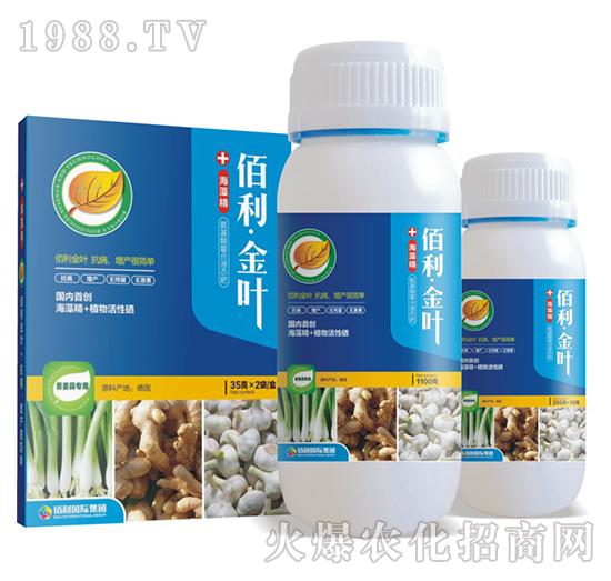 葱姜蒜专用-佰利・金叶-博佰利