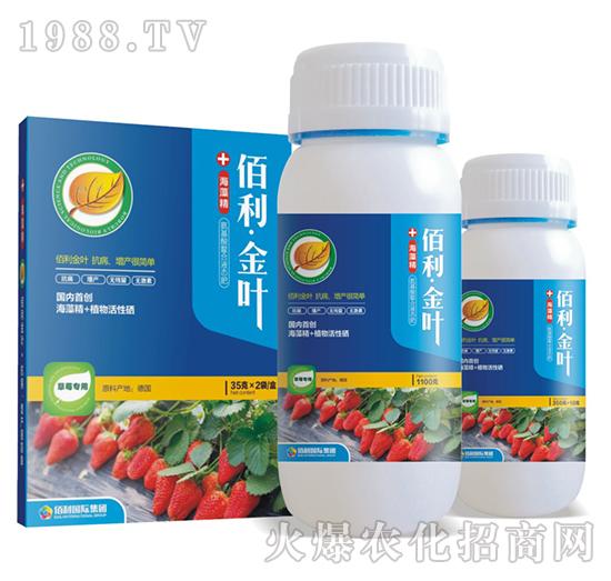 草莓专用-佰利・金叶-博佰利
