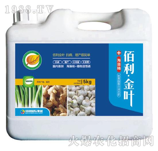 葱姜蒜专用-(桶装)佰利・金叶-博佰利