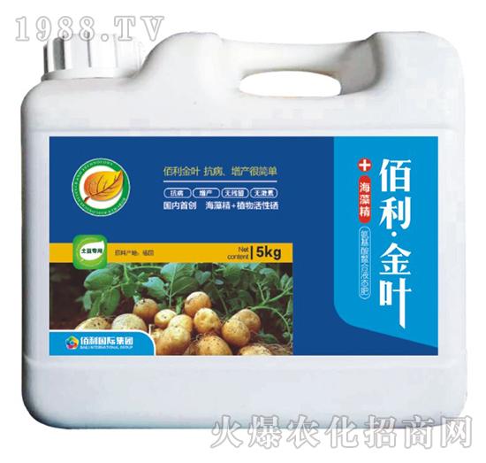 土豆专用-(桶装)佰利・金叶-博佰利