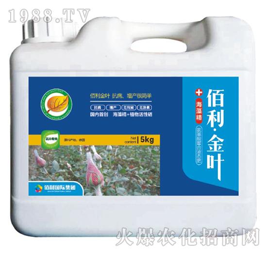 花卉专用-(桶装)佰利・金叶-博佰利