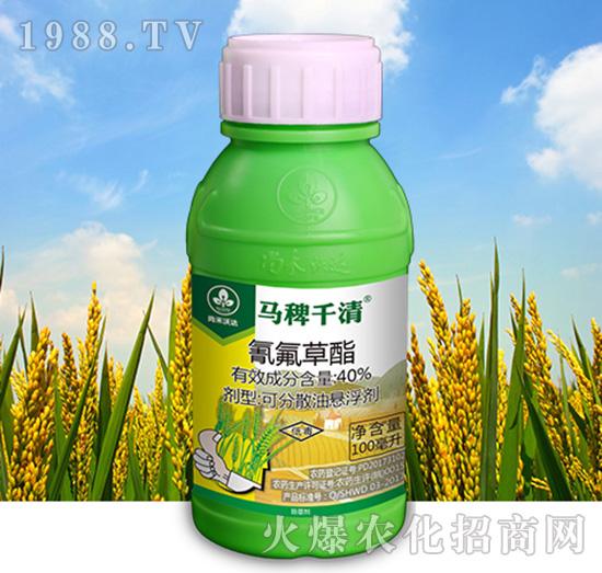 40%氰氟草酯-马稗千清-尚禾沃达
