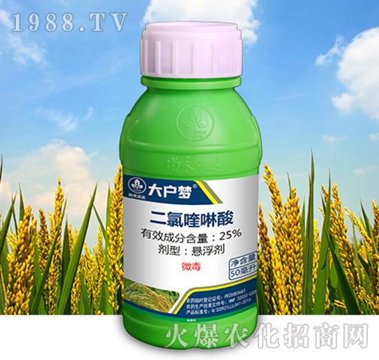25%二氯喹啉酸-大户梦-尚禾沃达