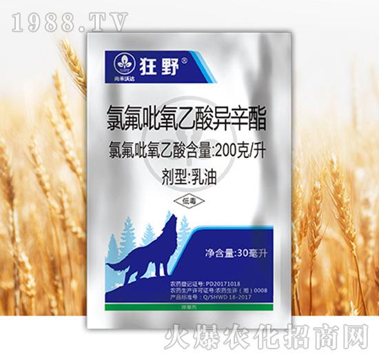 氯氟吡氧乙酸异辛酯-狂野-尚禾沃达