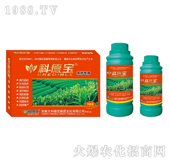 茶树专用营养增产调理剂-科德宝