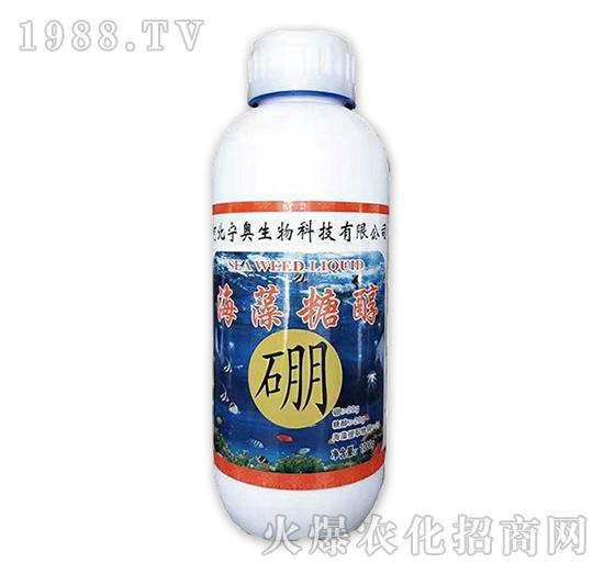 海藻糖醇硼-(1000g)-���W生物