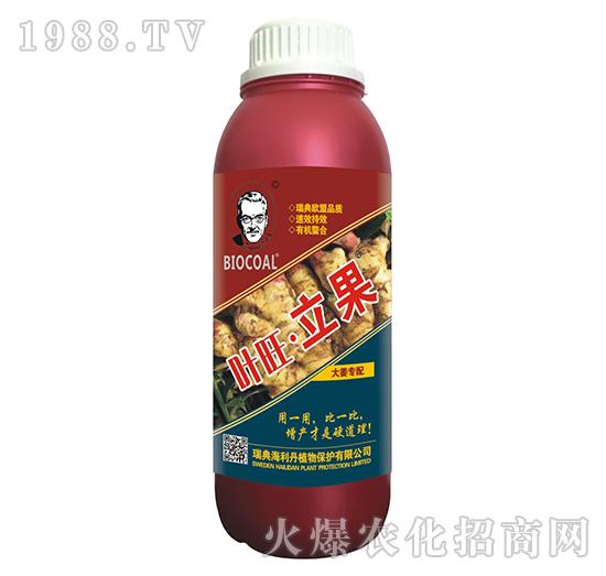 大姜需配-�~旺立果(瓶)-海利丹