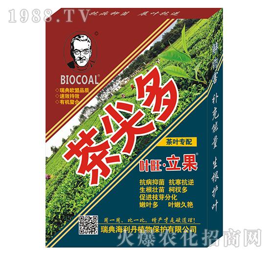 茶尖多-海利丹