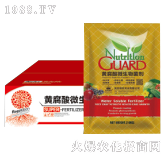 黄腐酸微生物菌剂-绿邦农化