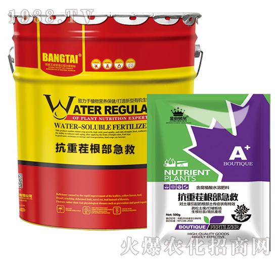 含氨基酸水溶肥料-抗重茬根部急救-绿邦农化
