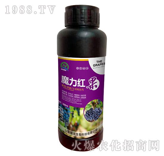葡萄果树生物转色剂-魔力红果-强农生物