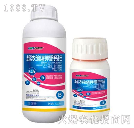 超浓缩磷钾硼钙钼-科利农
