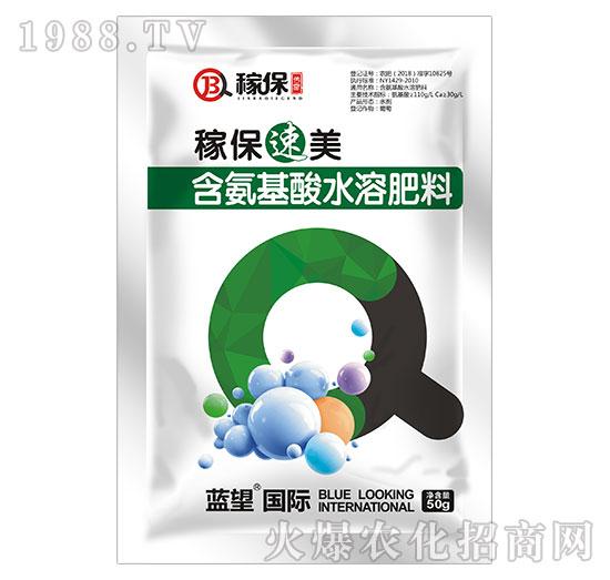 含氨基酸水溶肥料-稼保速美-蓝望国际