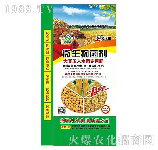 大豆玉米水稻专用微生物菌剂-中农国控