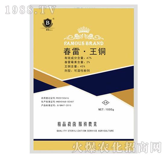 47%春雷・王铜-贝尔