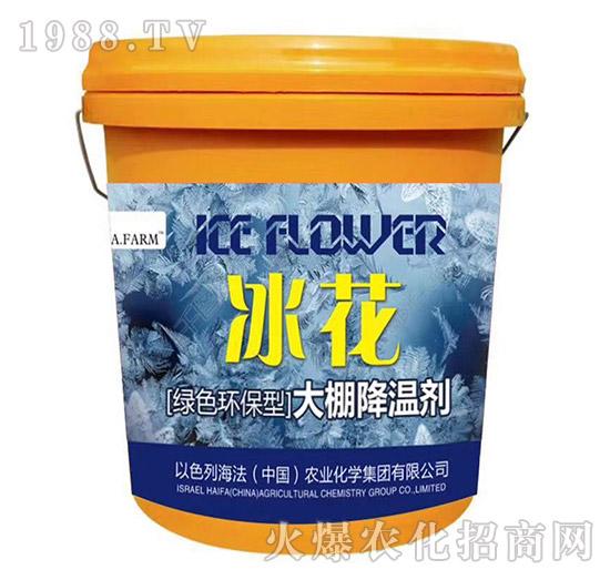 大棚降温剂-冰花-海法