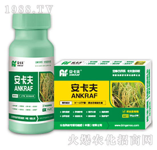禾谷类专用叶面肥-安卡夫