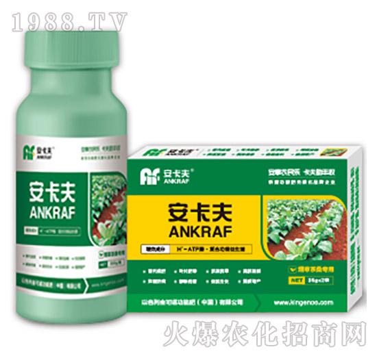 烟草茶桑专用叶面肥-安卡夫