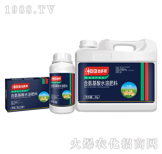 大姜专用含氨基水溶肥料-加多邦