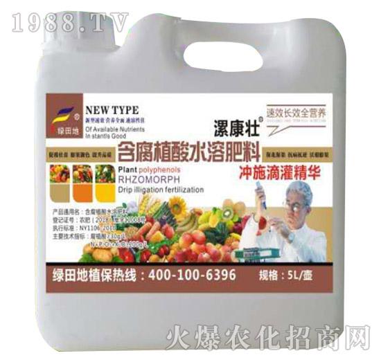 含腐殖酸水溶肥料-漯康壮-绿田地1