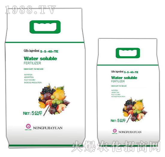 Water soluble FERTILIZER-5-5-40+TE-农夫稼园