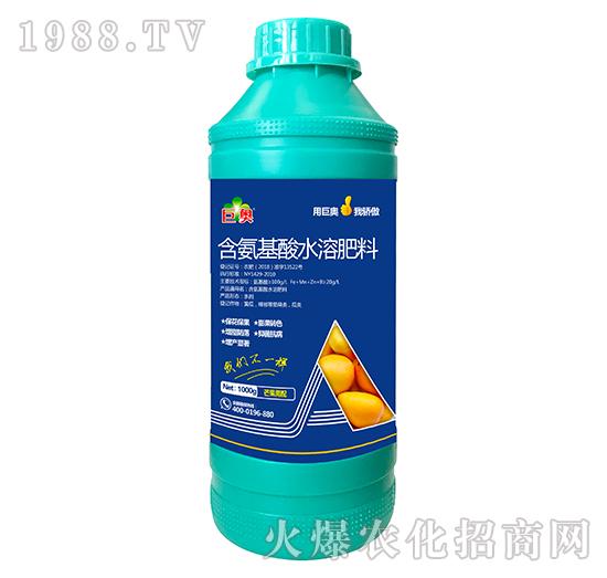 芒果需配含氨基水溶肥料-巨奥