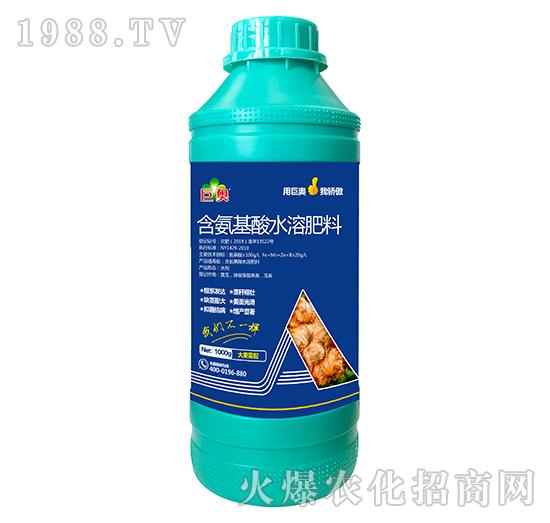 大姜需配含氨基水溶肥料-巨奥