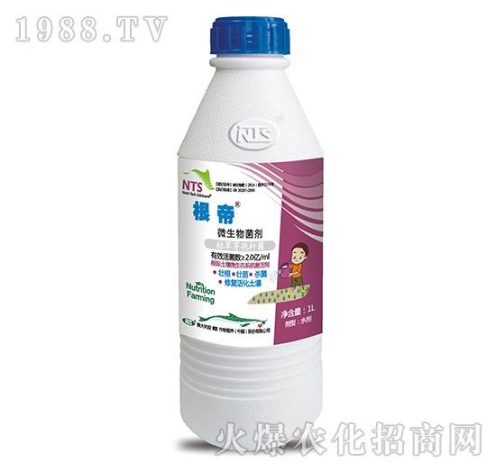 微生物菌剂-根帝-恩特施