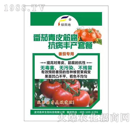 番茄青皮筋腐抗病丰产套餐-绿田地
