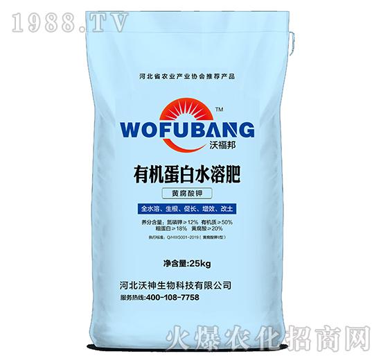 黄腐酸钾有机蛋白水溶肥-沃神生物