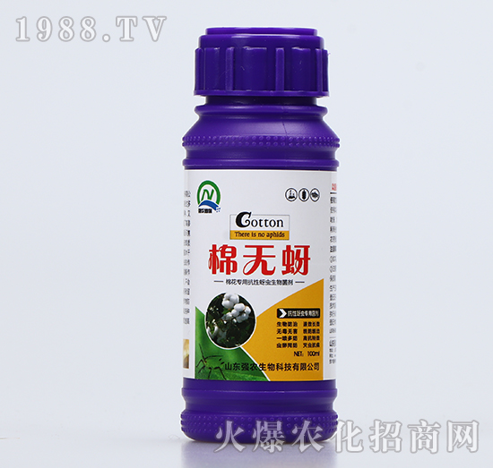 抗性蚜虫专用菌剂-棉无蚜-强农生物