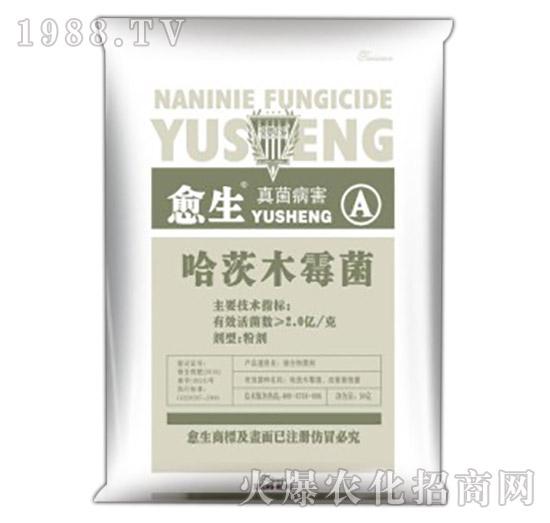 哈茨木霉菌-愈生-瀚宇作物