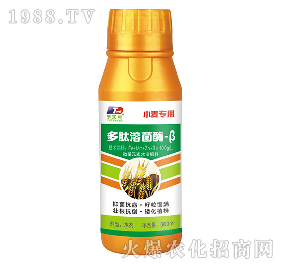 小麦专用多肽溶菌酶-β-天叶生物