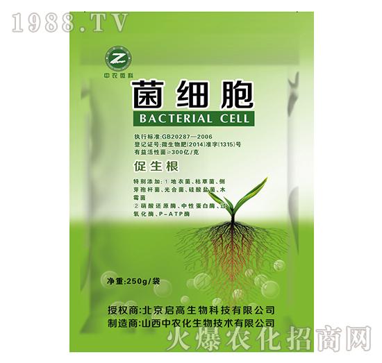 菌细胞-中农化