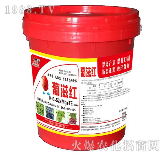 硫酸钾型大量元素水溶肥0-0-52+Mg+TE-葡滋红-中农化