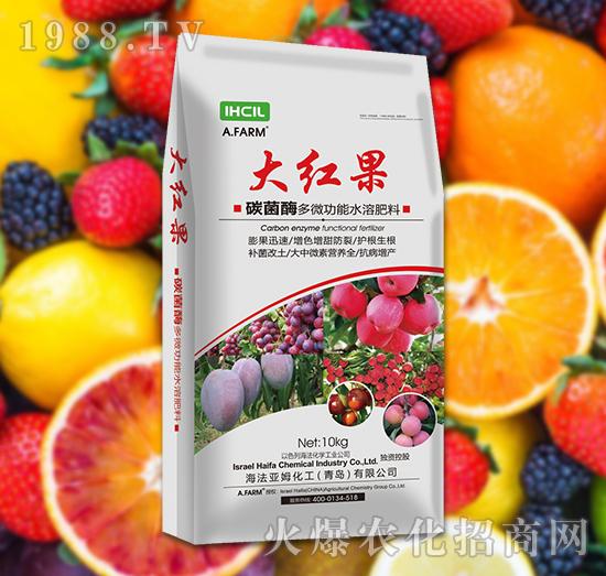 碳菌酶多微功能水溶肥料 大红果