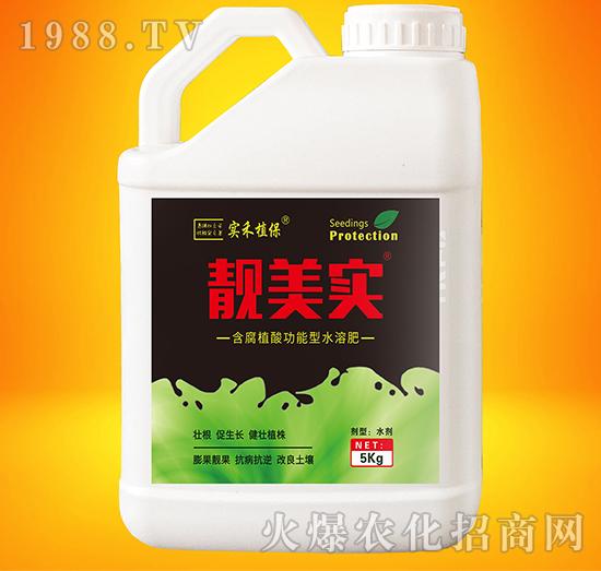 含腐植酸功能型水溶肥-靓美实-实禾