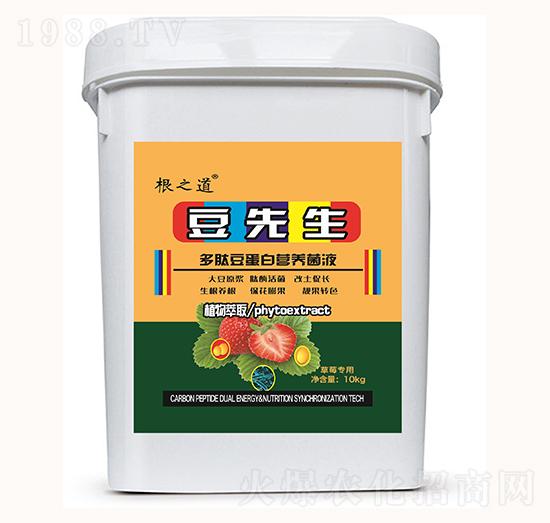 草莓专用多肽豆蛋白营养菌液-豆先生-根之道
