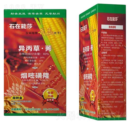 40%异丙草・莠+40克每升烟嘧磺隆-石在能莎-云鲲高科
