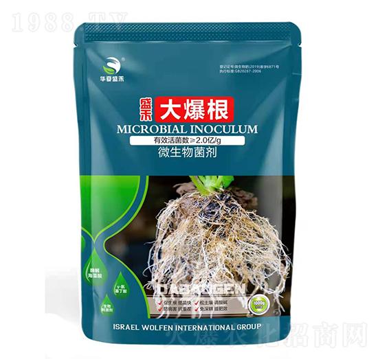 微生物菌剂-大爆根-盛禾