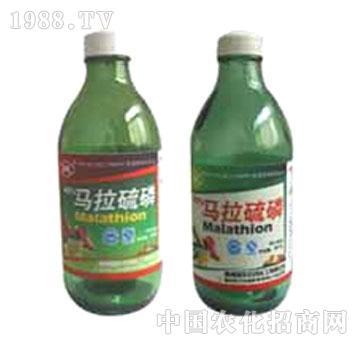 吴桥-马拉硫磷乳油