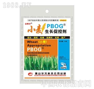 华龙-小麦生长促控剂