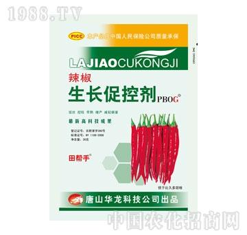 华龙-辣椒生长促控剂